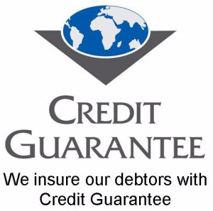 Credit Guarantee Logo